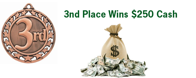 3rd Place Wins $250